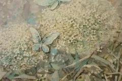 wildflowers001