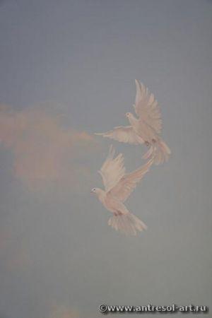 pigeons004.jpg