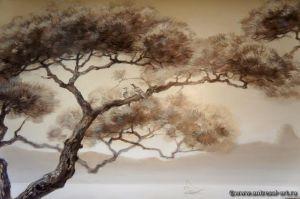 pine001.jpg