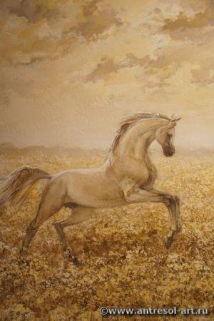 horse007.jpg