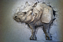 rhino_0004