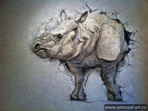 rhino_0004.jpg