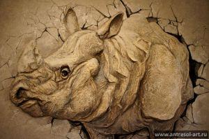 rhino_0005.jpg