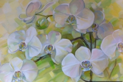 orchid_0002