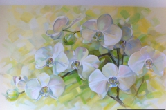 orchid_0003