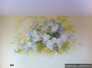 orchid_0001.jpg