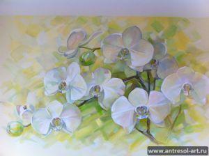 orchid_0003.jpg