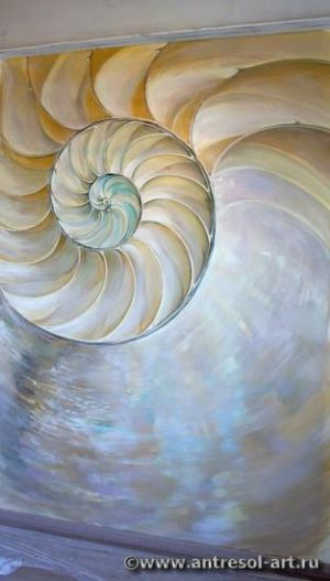 shell001_01.jpg