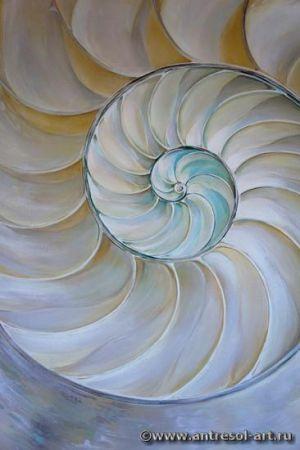 shell004_01.jpg